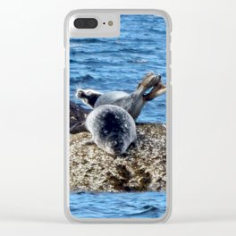 Seal Flips out on crowded rock Clear iPhone Case
