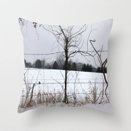 Snow covered field behind barb-wire fence Throw Pillow