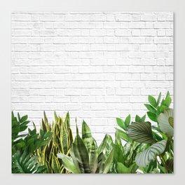 Plants Life Canvas Print