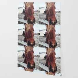 Brown horse face Wallpaper