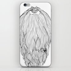 There's a BEAR in BEARd! iPhone & iPod Skin