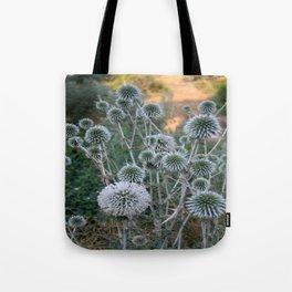 Seed Head Of Leek Flower Allium Sphaerocephalon  Tote Bag