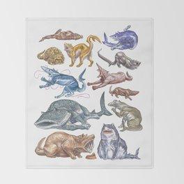 Shark Cats Series 1 Throw Blanket
