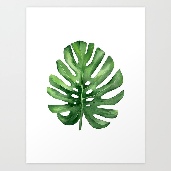 Watercolor Green Plants Monstera Nature Posters And Prints: Tropical Leaf, Monstera Leaf. Art Print By Asolo