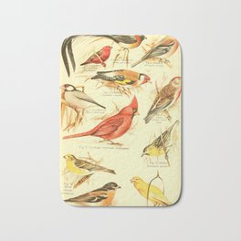 William Playne Pycraft - A Book of Birds (1908) - Plate 28: Some Perching- or Song-birds Bath Mat