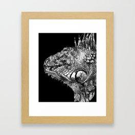 Black And White Iguana Art - One Cool Dude 2 - Sharon Cummings Framed Art Print