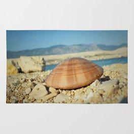 Seashell by the seashore Rug