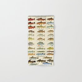 Illustrated Eastern Game Fish Identification Chart Hand & Bath Towel