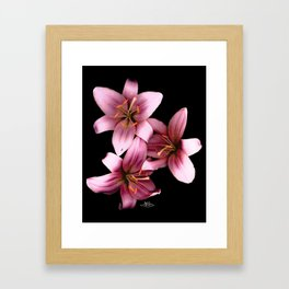 Pretty Pink Ant Lilies, Flowers Scanography Framed Art Print