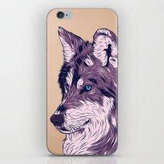Blue eyed wolf iPhone & iPod Skin