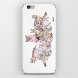 Foxes of the World iPhone Skin