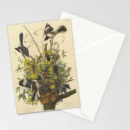 The MOCKING BIRD and RATTLESNAKE Audubon Stationery Cards