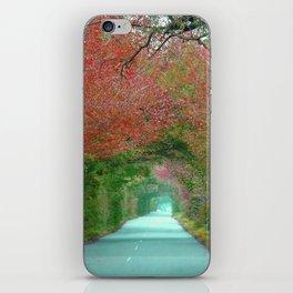 Tunnel iPhone Skin