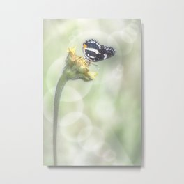 """""""Butterfly with Bubbles"""" Metal Print"""
