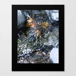 Water in a Stream Canvas Print