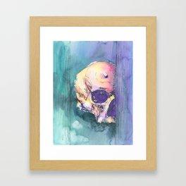 Colorful Skull 6 Framed Art Print