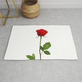 A RED LONG STEM ROSE BOTANICAL ART Rug