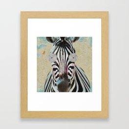 Zebra Baby Pop Art Framed Art Print