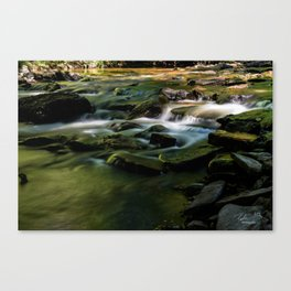 Silver Creek Long Exposure Canvas Print