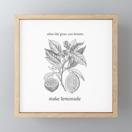 Lemon botanical drawing Framed Mini Art Print