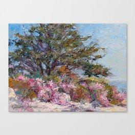 In The Pink — Point Lobos, Carmel, California Canvas Print