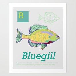 B is for Bluegill, Southeastern ABC's Art Print