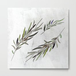 Eucalyptus Leaves White Metal Print