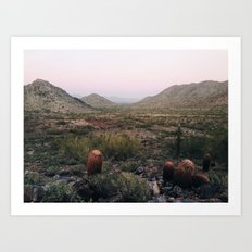 desert trails Art Print