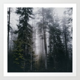 Into the forest we go Art Print