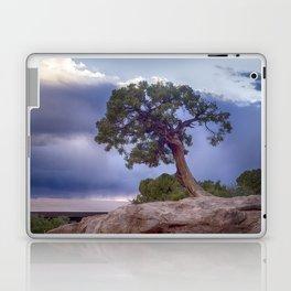 The Tree on the Edge Laptop & iPad Skin