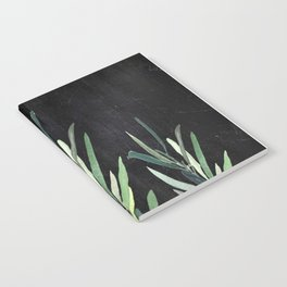 Eucalyptus Branches On Chalkboard Notebook