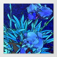 iris Canvas Prints featuring Iris by lillianhibiscus