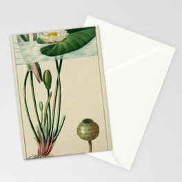 Flower nymphe blanche (Fr)13 Stationery Cards