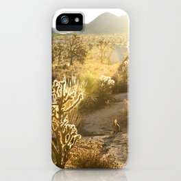 Mojave Desert iPhone Case