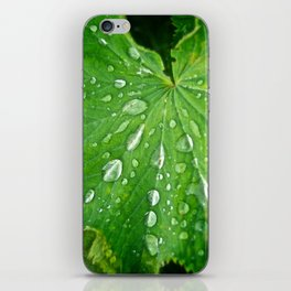 Green Life - The Peace Collection iPhone Skin