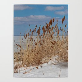Tame a Wild Wind II (vertical) Poster