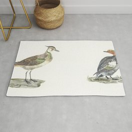 Lapwing and Duck by Johan Teyler (1648-1709) Rug