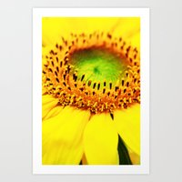 sunflower Art Prints featuring Sunflower by Falko Follert Art-FF77