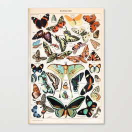 Adolphe Millot - Papillons pour tous - French vintage poster Canvas Print