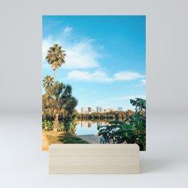 Lady Bird Lake dock Mini Art Print