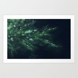 Vegetation Art Print