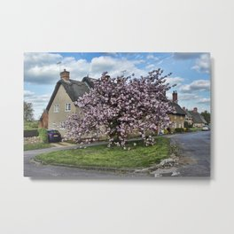 Ashby St Ledgers thatched cottages Metal Print
