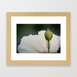 091227 Framed Art Print