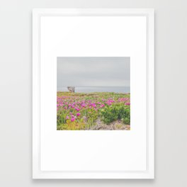 Across the flowers to the ocean Framed Art Print