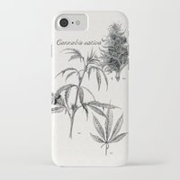 cannabis iPhone & iPod Cases featuring Cannabis sativa by 420Illustrations