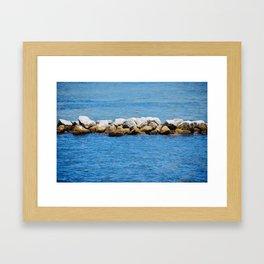 Port St. Joe Marina view 26 Framed Art Print