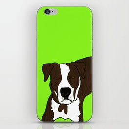 Chico the Brindled Pit Bull iPhone Skin