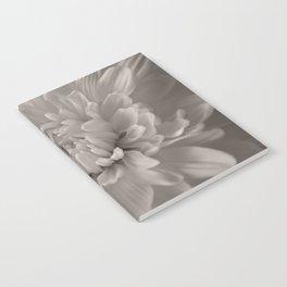 Monochrome chrysanthemum close-up Notebook