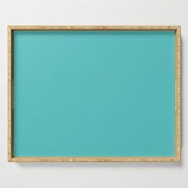 "Dunn & Edwards 2019 Trending Colors ""Port Hope"" (Light Aqua Blue /Teal / Turquoise) DE5731 Solid Col Serving Tray"