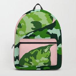 Aglaonema pictum tricolor Backpack